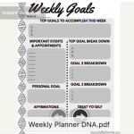 DNA Planner Thumbnail PhD Fashionista Studio